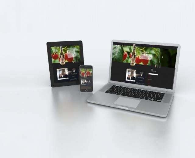 Finnviini - Nettisivut